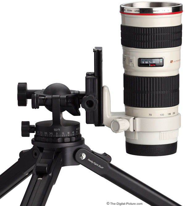 70-200mm Lens Mug with Canon Tripod Ring A II on Ball Head