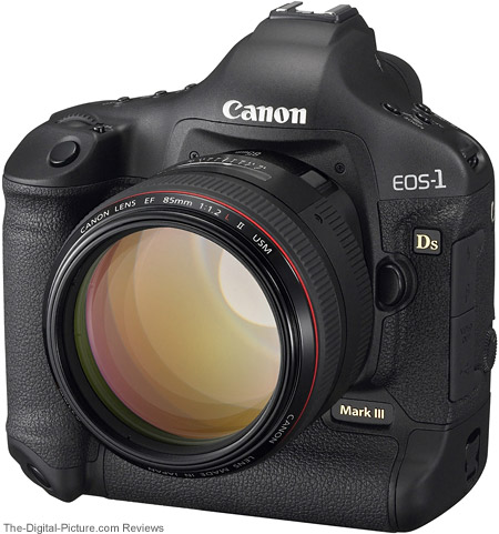 Canon EF 85mm f/1.2L II USM Lens mounted on a EOS 1Ds Mark III DSLR
