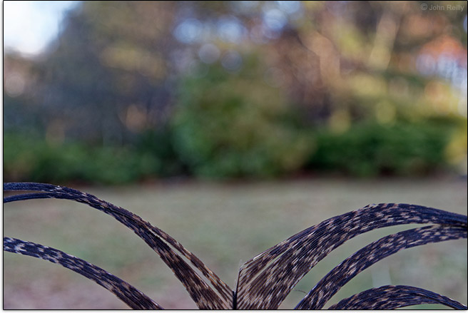 Canon EF-M 11-22mm f/4.5-5.6 IS STM Lens Maximum Blur Example