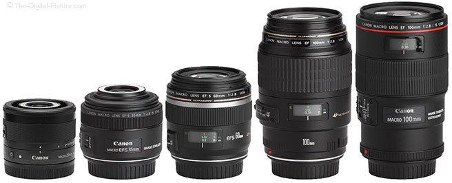 Canon EF-M 28mm f/3.5 Macro IS STM Lens Comparison to Macro Lenses
