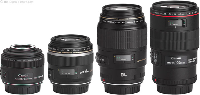 Canon EF-S 35mm f/2.8 Macro IS STM Lens Compared to Similar Lenses