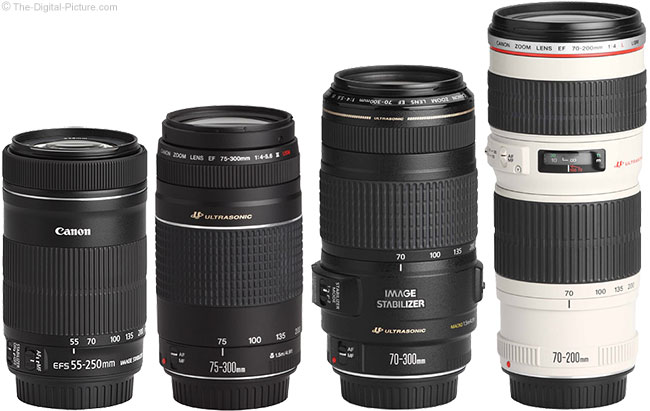 Canon Budget Telephoto Zoom Lenses