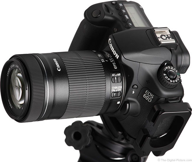 Canon EF-S 55-250mm IS STM Lens on Camera