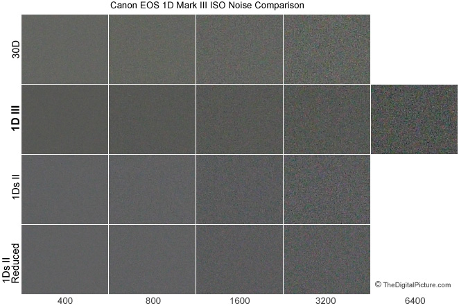 1D Mark III Digital SLR Camera noise comparison with 30D and 1Ds Mark II - 5000k Fluorescent Lights