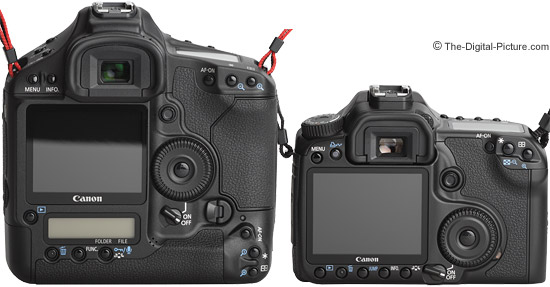 40D compared to a Canon 1D Mark III - Back View