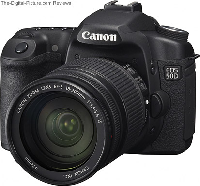 Canon EOS 50D Mounted Lens Comparison