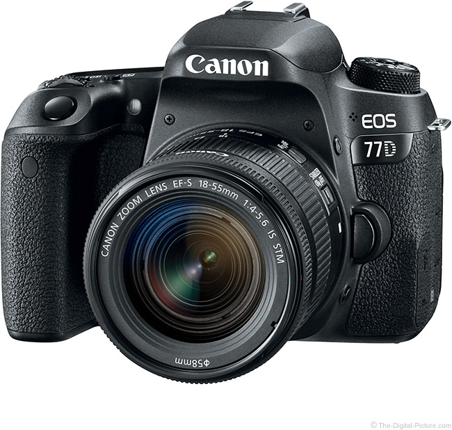 Canon EOS 7D with EF-S 18-55mm f/4-5.6 and EF-S 18-135mm f/3.5-5.6 IS STM Lenses Compared