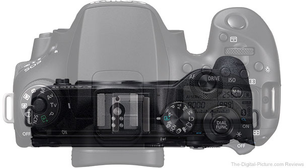 Canon EOS 90D Compared to the Canon EOS M6 Mark II – Top