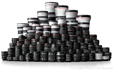 Canon EOS R Compatible Lenses