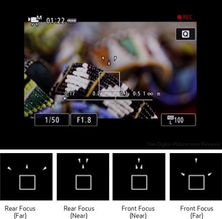 Canon EOS R Dual Pixel Focus Guide