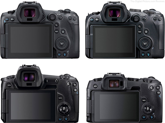 Canon EOS R-Series Back View