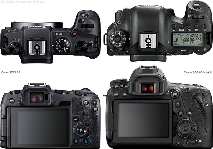 Mirrorless vs. DSLR Camera Comparison: Canon EOS RP Compared to EOS 6D Mark II