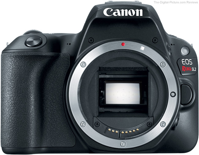 Canon EOS Rebel SL2 No Lens
