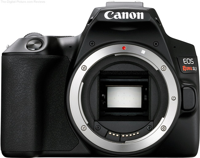 Canon EOS Rebel SL3 Body