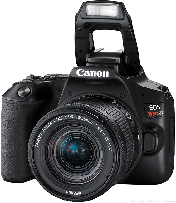 Canon EOS Rebel SL3 Flash Up