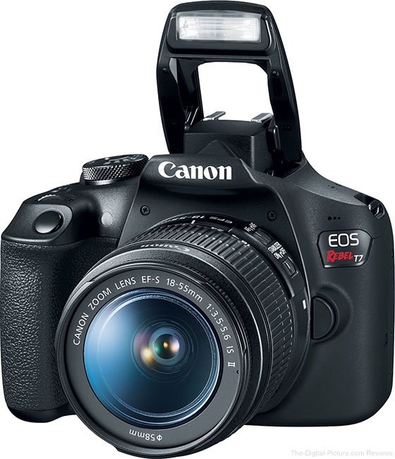 Canon EOS Rebel T7 Flash Up