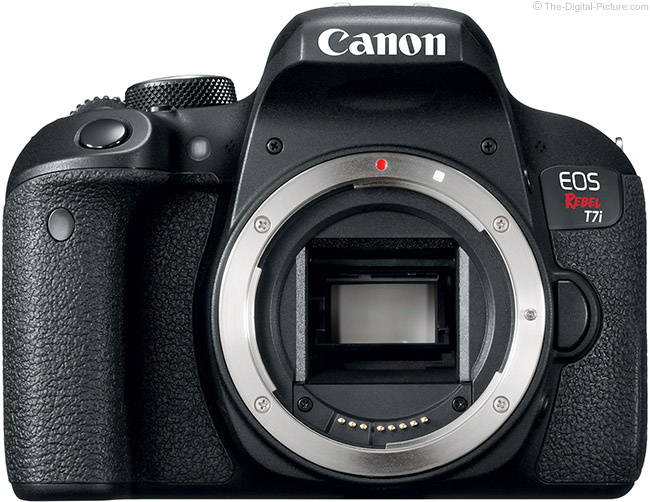 Canon EOS Rebel T7i / 800D with No Lens