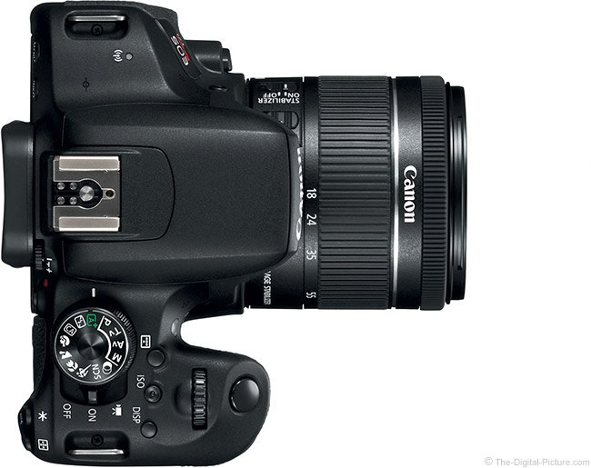 Canon EOS Rebel T7i / 800D with EF-S 18-55mm f/4-5.6 and EF-S 18-135mm f/3.5-5.6 IS STM Lenses Compared