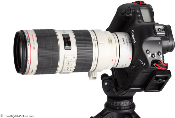 70-200 f/2.8 II IS On Camera Example