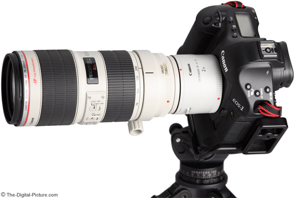 Canon EF 2x III Extender On Camera Example