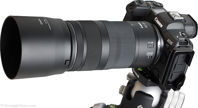 Canon RF 100-400mm F5.6-8 IS USM Lens Angle View with Hood