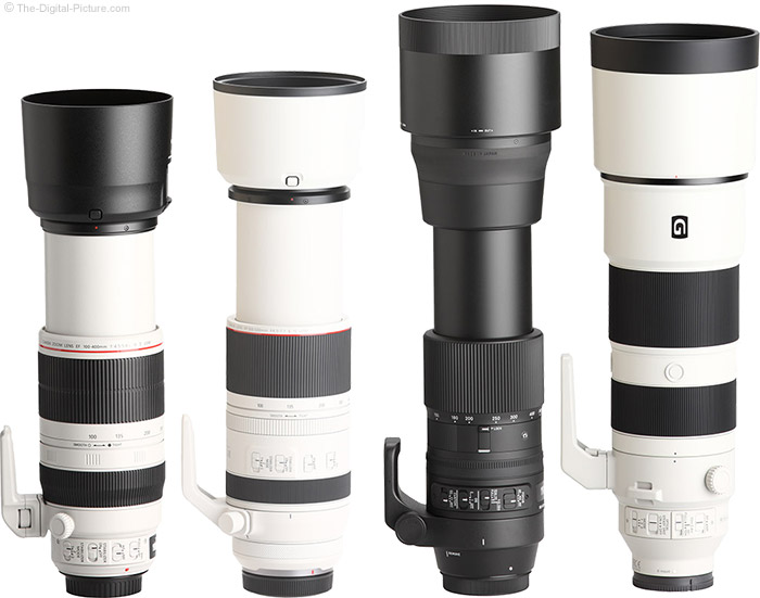 Canon RF 100-500mm F4.5-7.1 L IS USM Lens Compared to Similar Lenses with Hoods