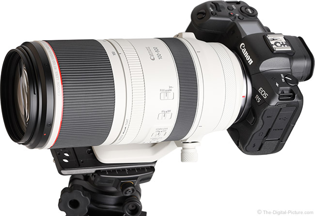 Canon RF 100-500mm F4.5-7.1 L IS USM Lens Angle View