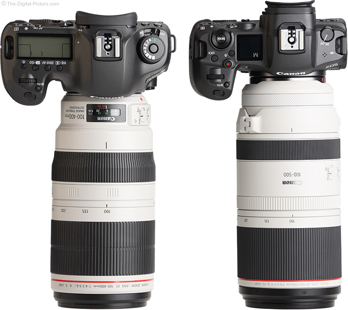 Canon RF 100-500 Lens Compared to EF 100-400 Lens with Cameras