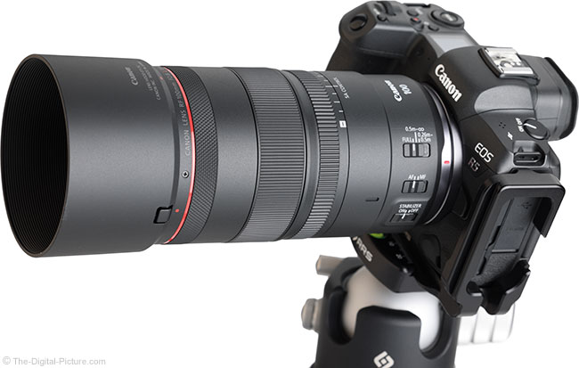 Canon RF 100mm F2.8 L Macro IS USM Lens Angle View with Hood