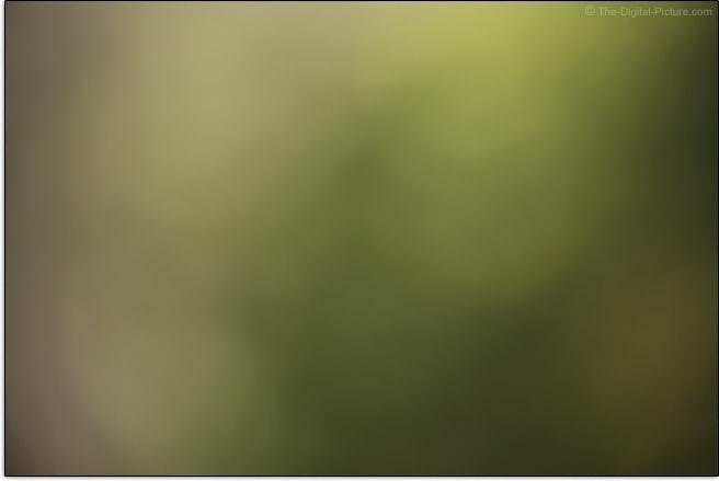 Canon RF 24-240mm F4-6.3 IS USM Lens Maximum Blur Example