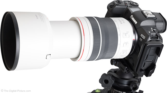 Canon RF 70-200mm F4 L IS USM Lens Angle View Extended with Hood