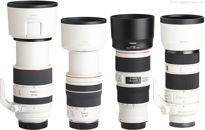 Canon RF 70-200mm F4 L IS USM Lens Compared to Similar Lenses with Hoods