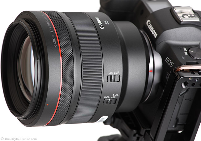 Canon RF 85mm F1.2 L USM Lens Angle View