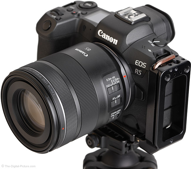 Canon RF 85mm F2 Macro IS STM Lens Angle View