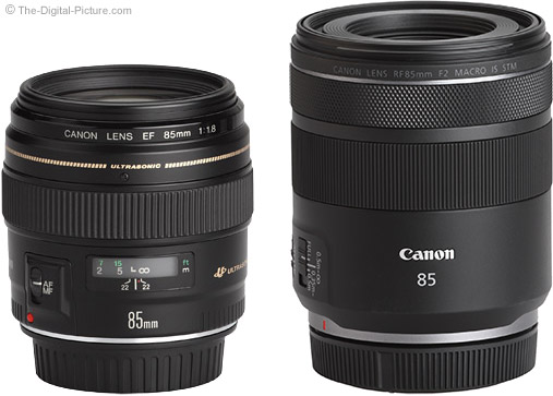 Canon RF 85mm F2 Macro IS STM Lens Compared to Canon EF 85mm f/1.8 USM Lens