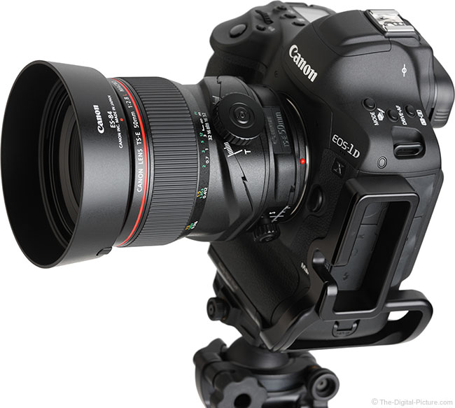 Canon TS-E 50mm f/2.8L Tilt-Shift Macro Lens Angle View with Hood