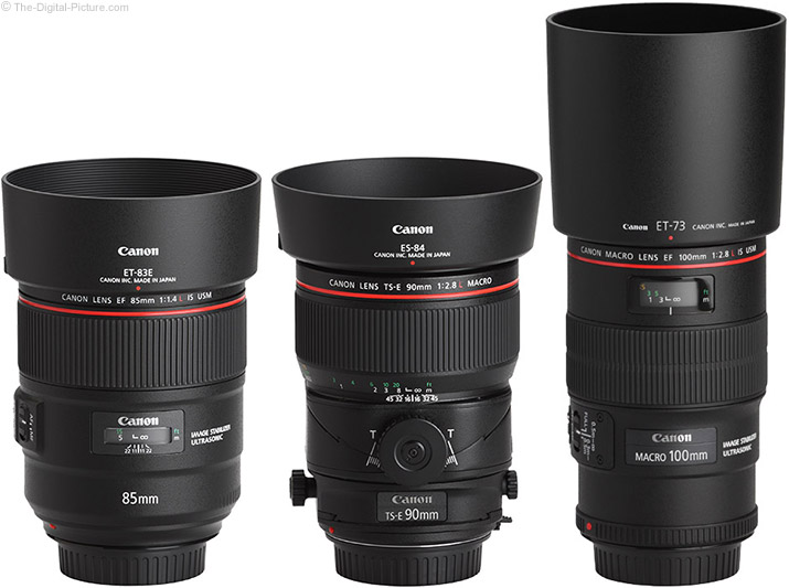 Canon TS-E 90mm f/2.8L Tilt-Shift Macro Lens Compared to Similar Lenses with Hoods