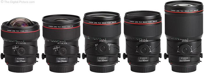Canon L-Series Tilt-Shift Lens Family Picture