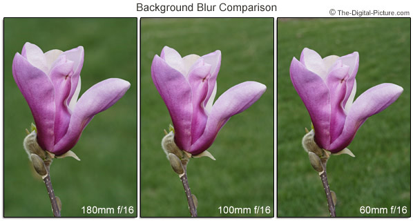 Focal Length Background Blur Comparison