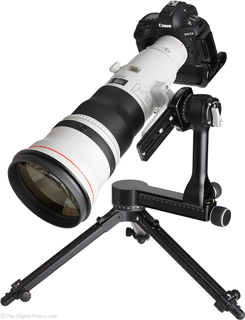 Really Right Stuff PG-02 Pano-Gimbal Head with 600mm Lens Side-Mounted