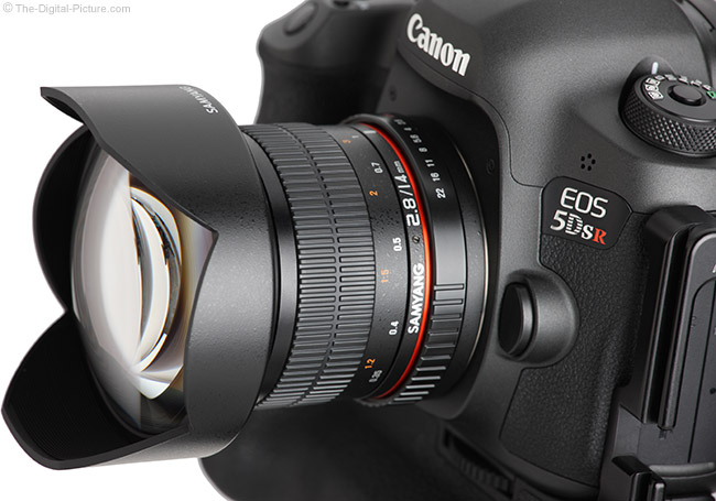 Samyang 14mm f/2.8 Lens Angle Close-Up View