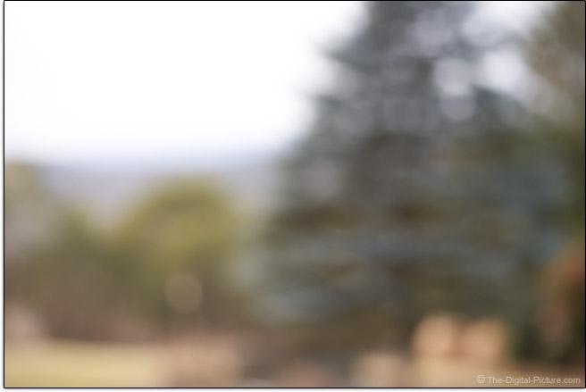 Sigma 100-400mm f/5-6.3 DG DN OS Contemporary Lens Maximum Blur Example