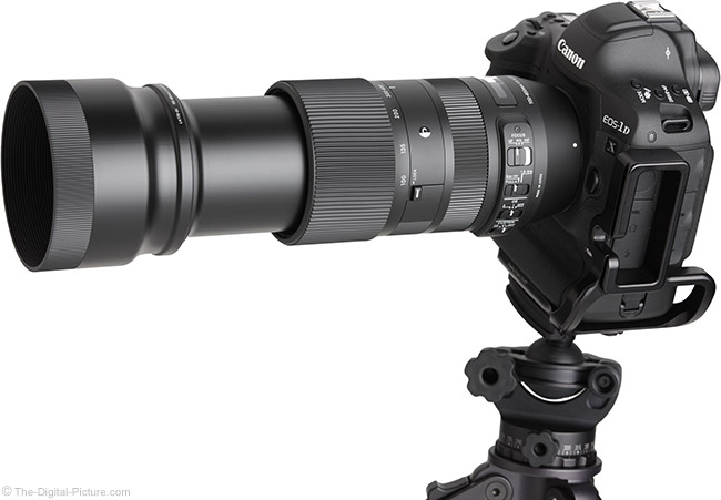 Sigma 100-400mm f/5-6.3 DG OS HSM C Lens Angle View Extended with Hood