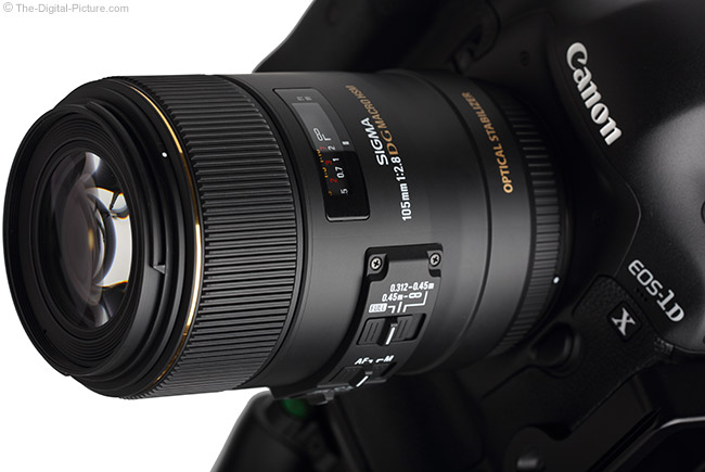 Sigma 105mm f/2.8 EX DG OS HSM Macro Lens Close-Up