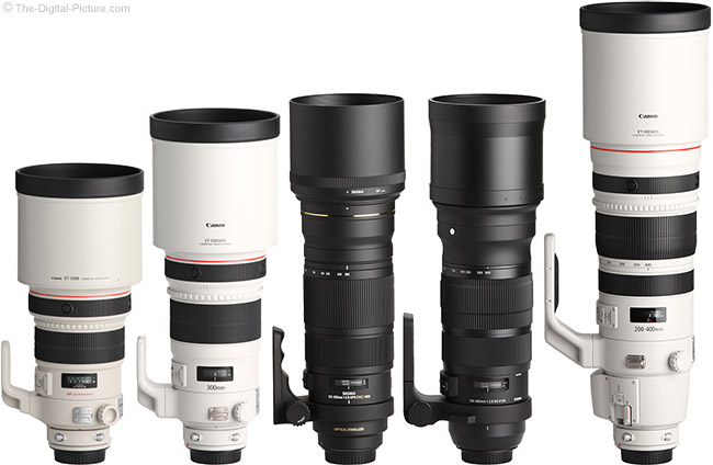 Sigma 120-300mm f/2.8 DG OS HSM Sports Lens Compared to Similar Lenses with Hoods