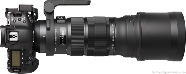 Sigma 120-300mm f/2.8 DG OS HSM Sports Lens Side View with Hood