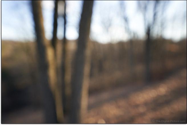 Sigma 14-24mm f/2.8 DG DN Art Lens Maximum Blur Example
