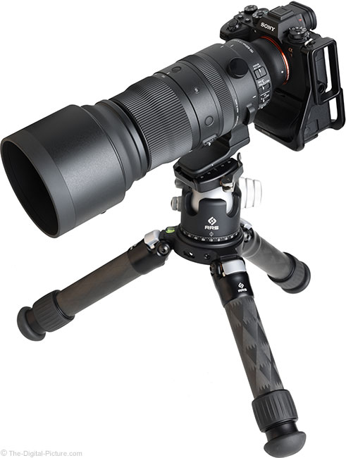 Sigma 150-600mm f/5-6.3 DG DN OS Sports Lens Angle View