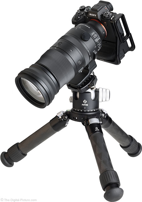 Just Posted: Sigma 150-600mm f/5-6.3 DG DN OS Sports Lens Review