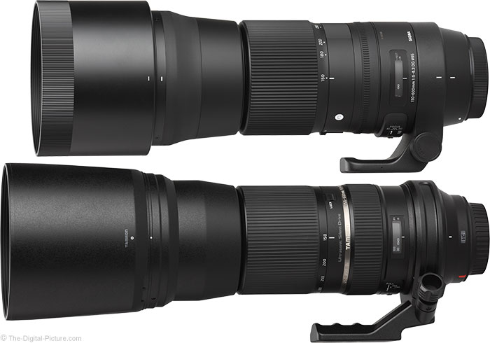 Sigma 150-600mm OS Contemporary Lens Compared to Tamron